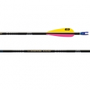 EASTON A/C/G ARROW