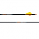 EASTON LIGHTSPEED 3D ARROW