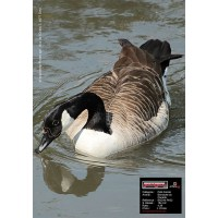 MAXIMAL ANIMAL FACE CANADIAN GOOSE
